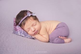philadelphia-newborn-lavendar.jpg