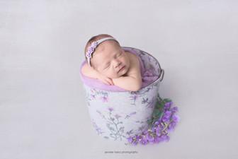 chester-county-newborn-floral.jpg