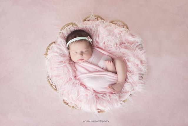 philadelphia-newborn-pink-basket.jpg