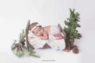 philadelphia-newborn-trees.jpg