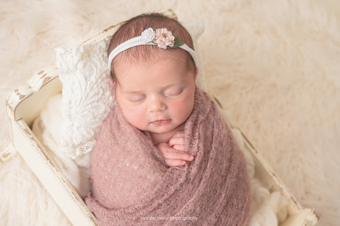 chester-county-newborn-bed.jpg