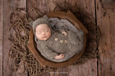 chester-county-newborn-brown-bear.jpg