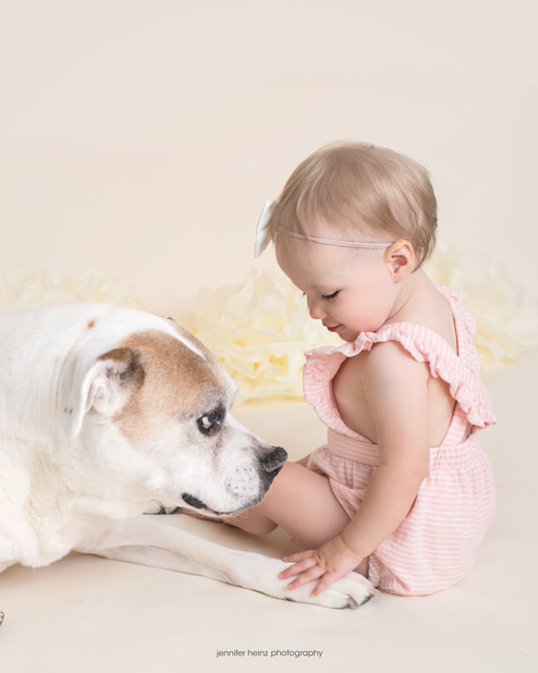 chester-county-birthday-pup.jpg
