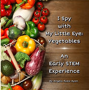 AbridgeClub.com- Picture book - I Spy Ve