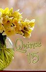 Quince - Yellow in vase.jpg