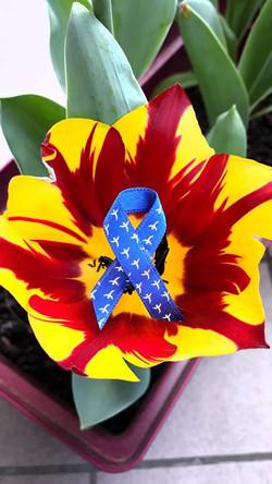 ruban sur fleur