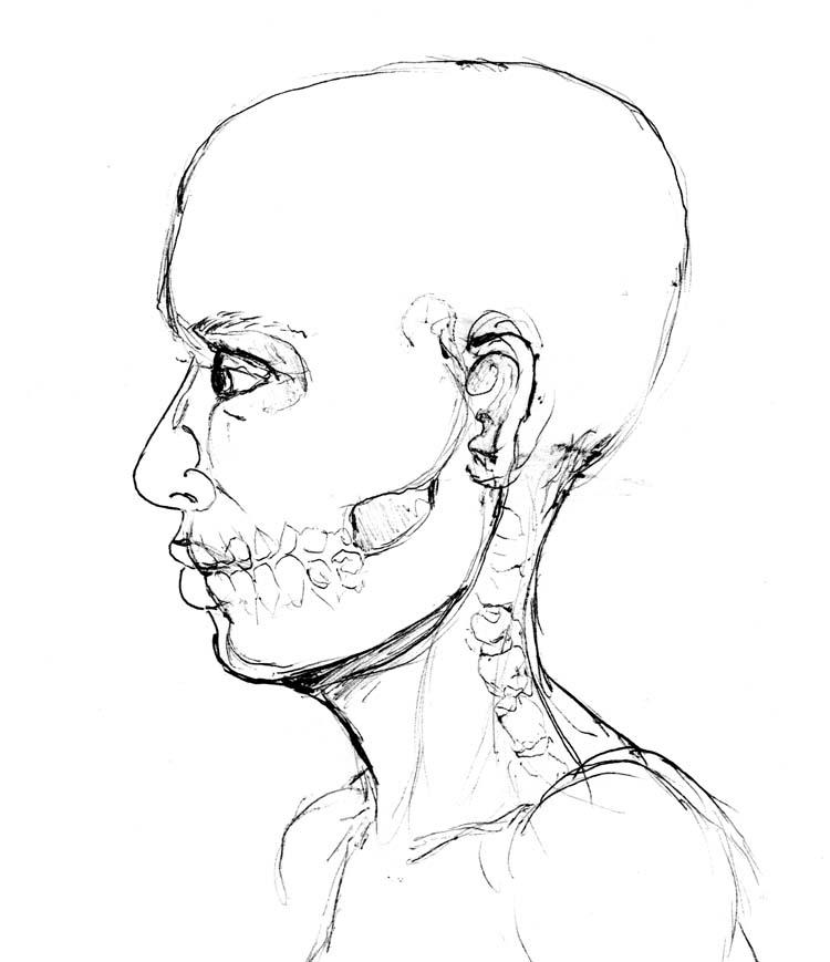 XRAY profile