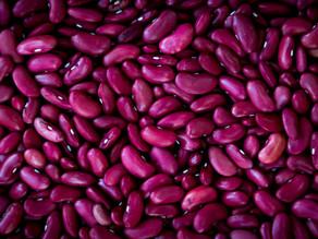 Les légumes secs : des aliments encore trop peu consommés
