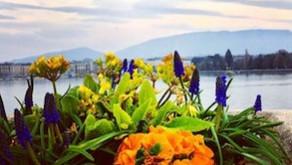 Travel in Geneva with food intolerances