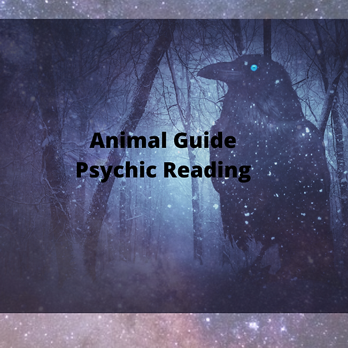 Animal Spirit Guide Psychic Reading