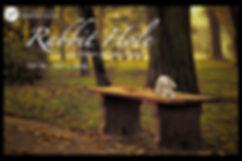 RABBIT HOLE show image.jpg