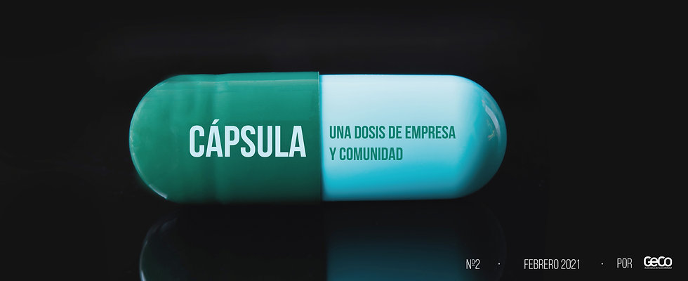 capsula-2.jpg