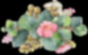 fleur 01.png