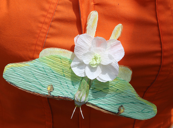 Crepe paper luna moth and flower