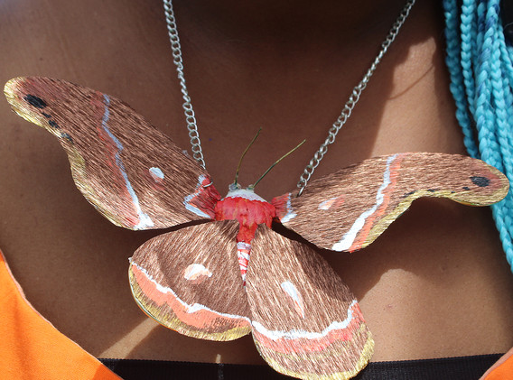 Crepe paper cecropia moth