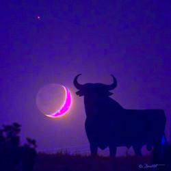 Marte Luna y Toro