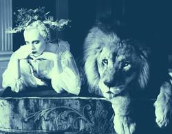 tim walker lion bluyellow
