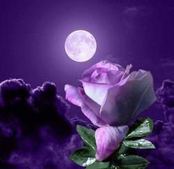 purple moon 2