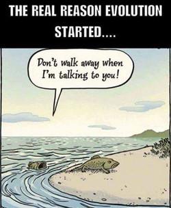 evolotion nagging