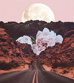 mooncrabart_edited
