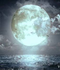silver moon blu