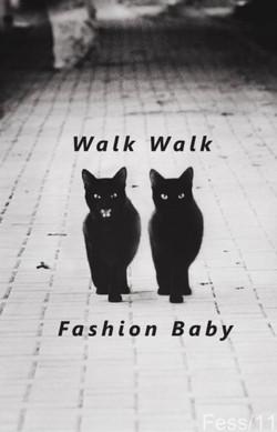 walk walk cats