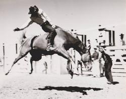 Gib Lloyd of Miles City on Sundance at Fallon County Fair on Aug 20 1960