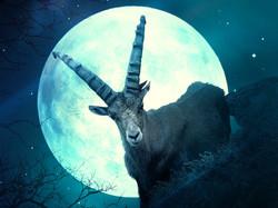 blu goat moon bright