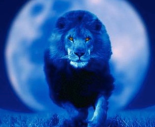LEO FULL MOON ...are we gonna WALK our TALK or WHAT?