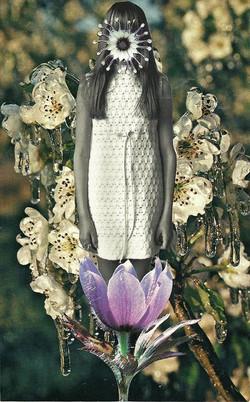 floral chic. mary herrara_
