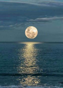sea sall moon