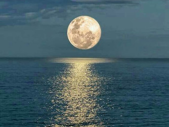 CRAB FULL MOON-the TIDE is HIGH