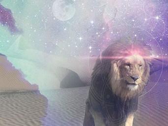 LION MOON GLORY