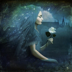 Christian Shloe moonflower