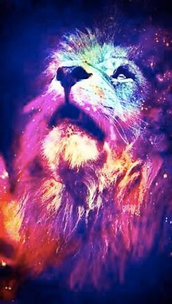 rainbow lioncolouressential