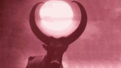 buffaloe moon pink
