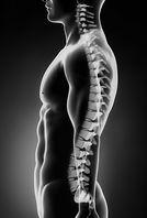 coaching postural