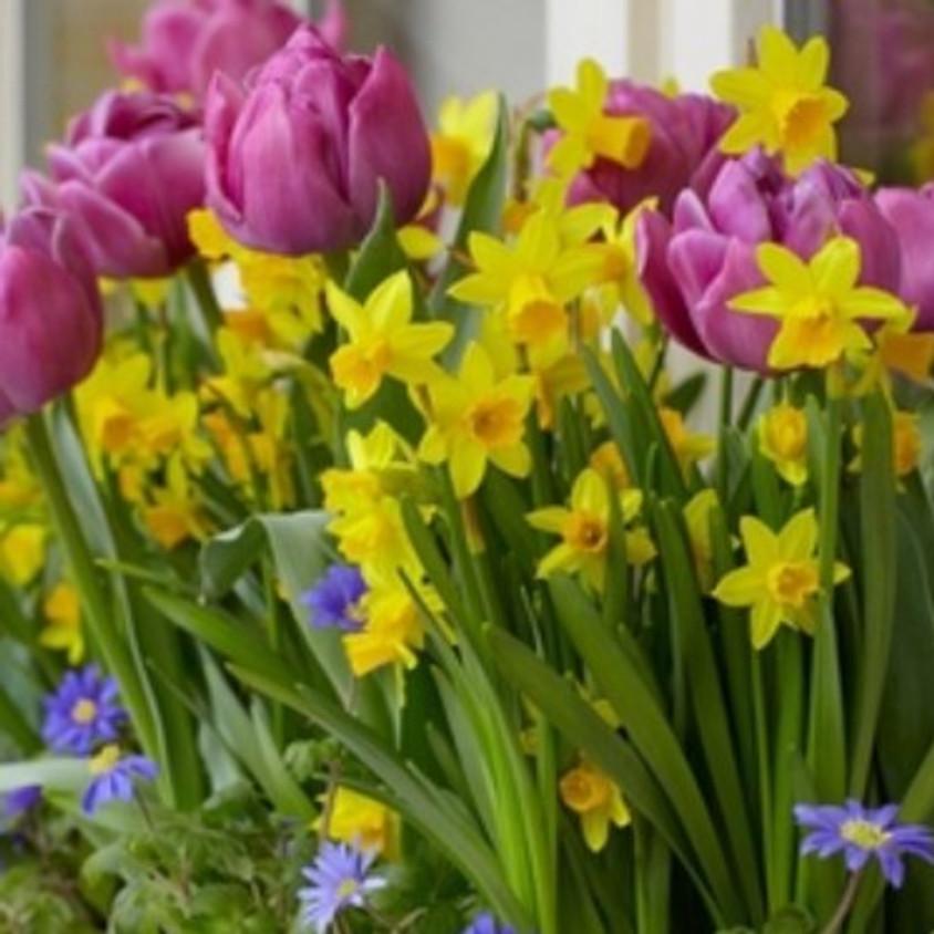 Wine and Design Spring Bulb Planter