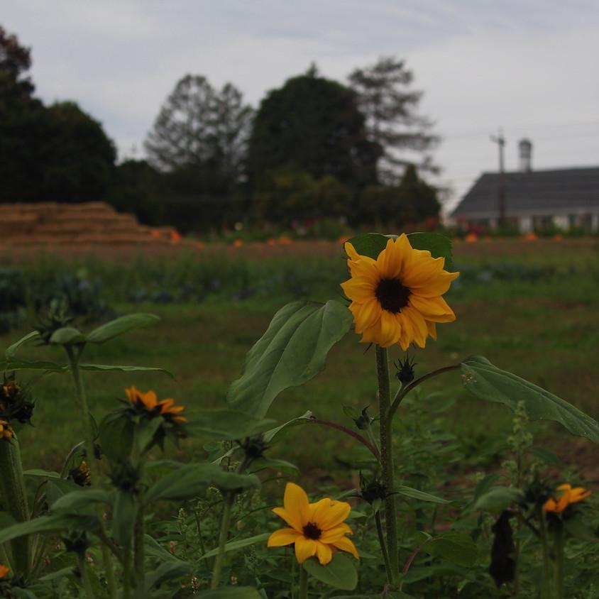 Farm Tour - Homeschool Enrichment