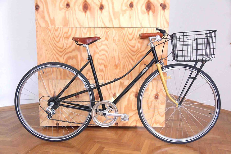 S13 album vintag ladies bike shopper .jpg