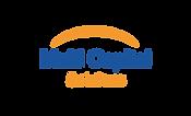 logo MultiCapital.png