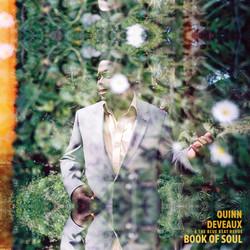 Book of Soul Vinyl cover copy 2