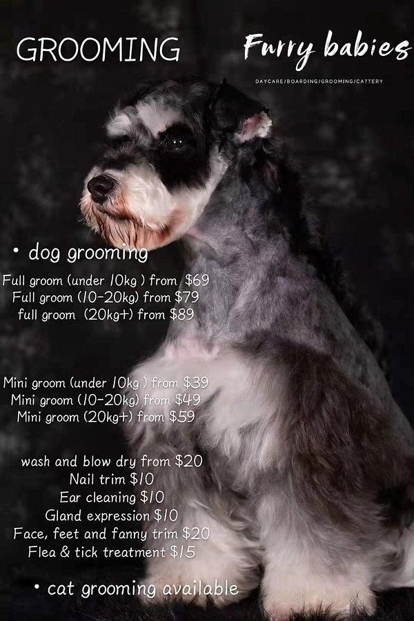 grooming.jpeg