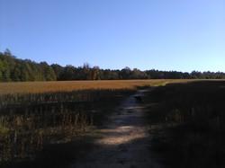 Taking a break at Tapp's farm