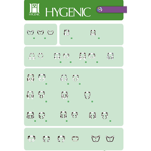 CLAMPS HYGENIC