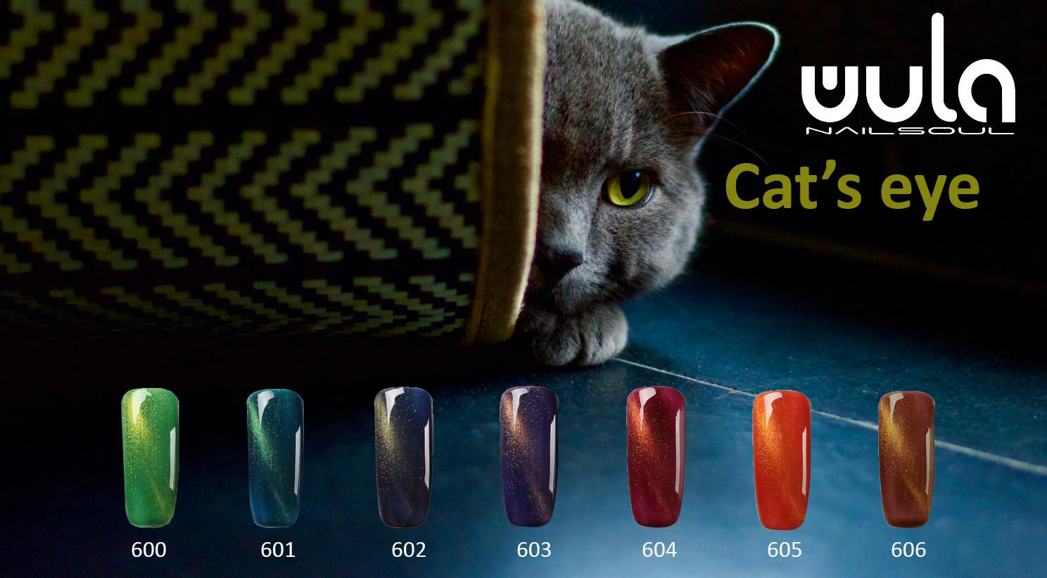 кошачий глаз слайд.jpg