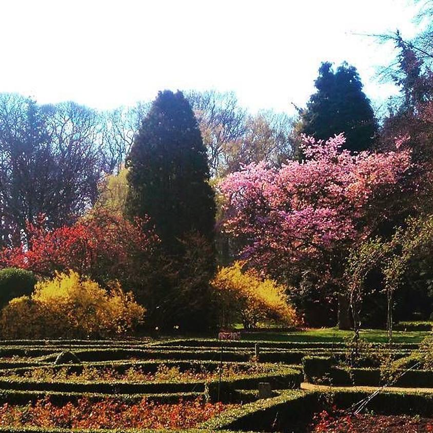 Wandelen met een verhaal in het park van Brasschaat