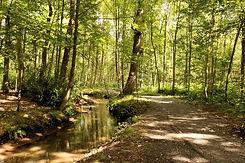 park-brasschaat-belgië-79871923.jpg
