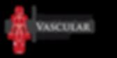 MVS-logo-web.png