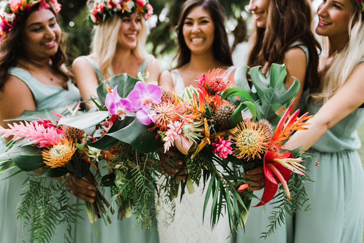 Image by NV Maui Media
